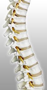houston chiropractor, pain releif